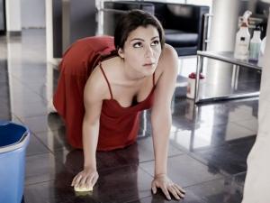 The Housemaid's Tale